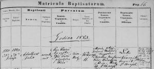 adalbert puric vrbanja 1883